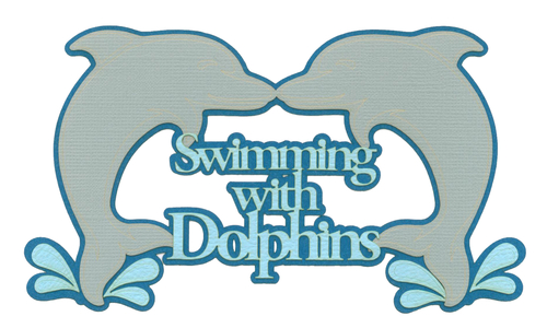 Swim with Dolphins | General Theme Parks